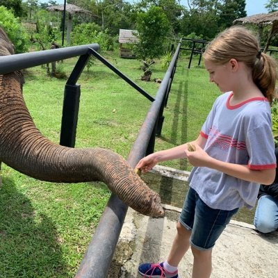 Ellie's Elephants Book Reading