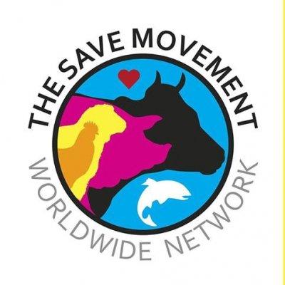 Presentation of the Save Movement + Activism Workshop