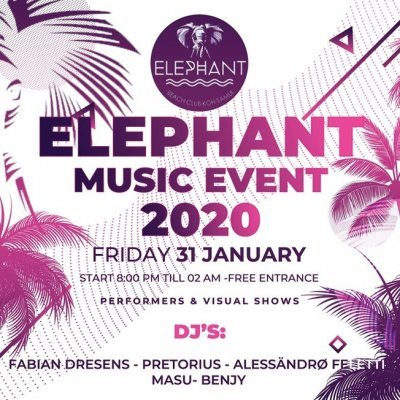 Elephant MUSIC EVENT 2020