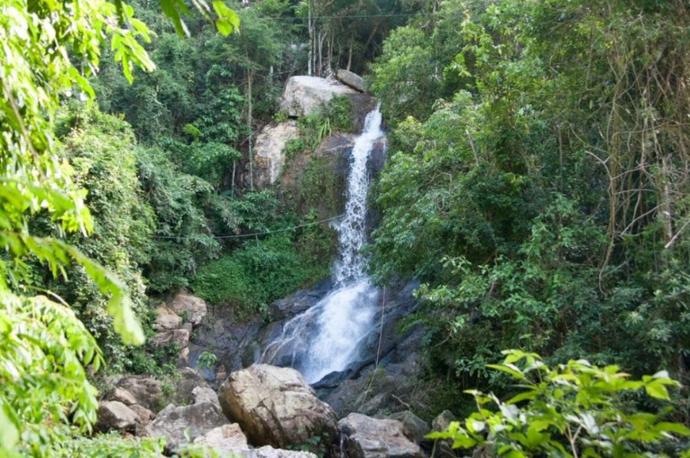 See a waterfall in a jungle
