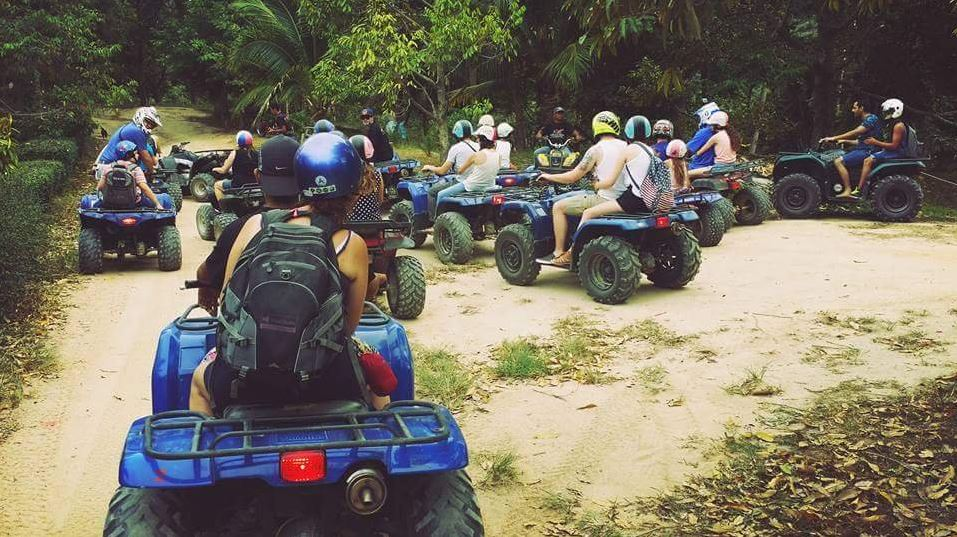 Let's ride through the jungle!