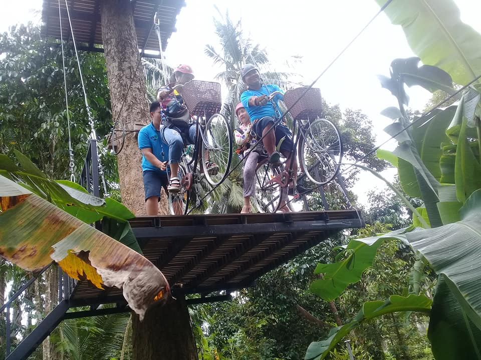 Ride your bike on top of a jungle