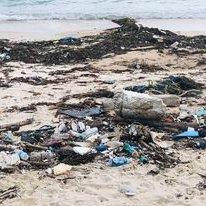 Trash Hero Beach Cleanup Bandon