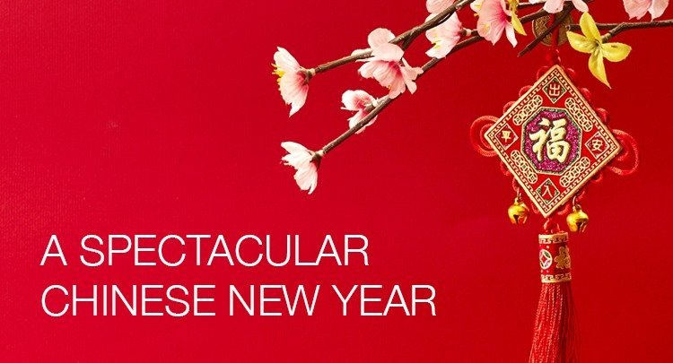 A Spectacular Chinese New Year Celebration