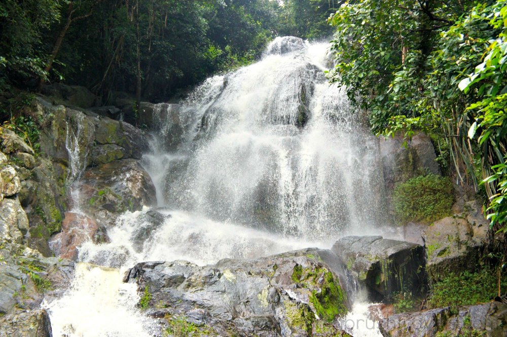 See the beautiful waterfall
