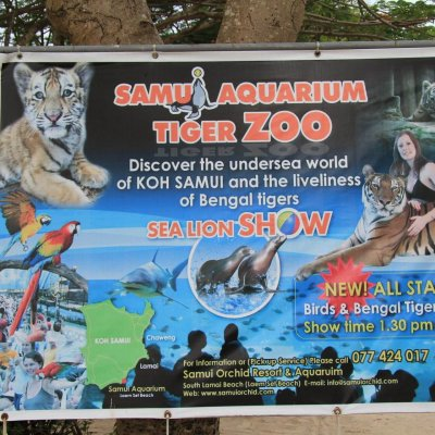 Samui Aquarium & Tiger Zoo