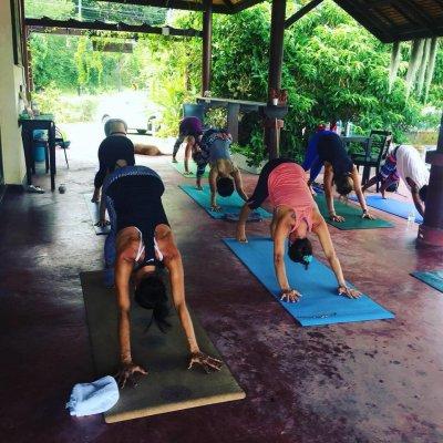 Free Yoga Samui Community