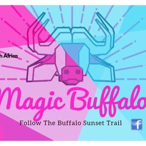 Magic Buffalo