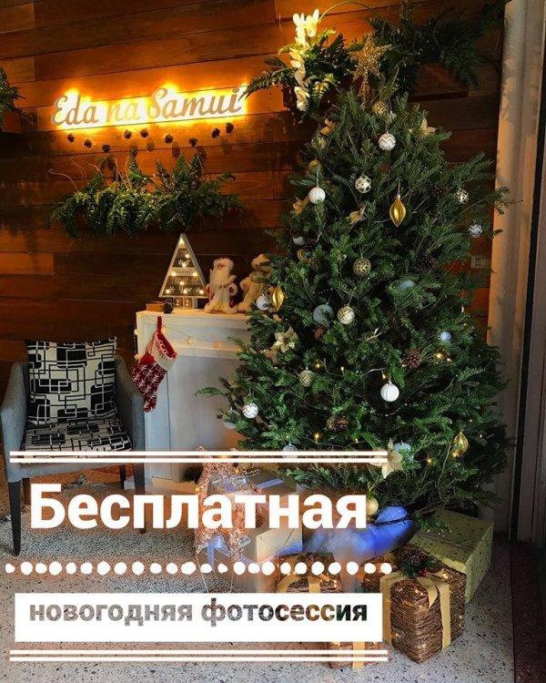 Бесплатная новогодняя фотосессия у живой елки