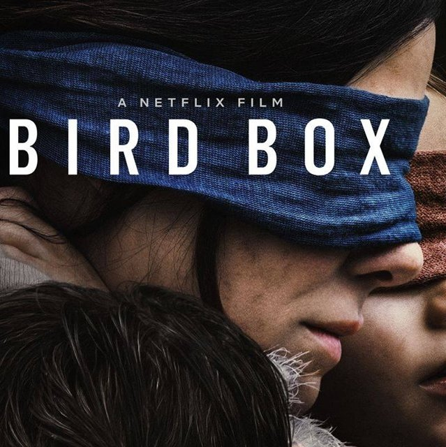 "Cinema ""Bird Box"""