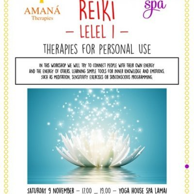 Reiki Level 1 workshop