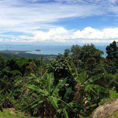 Kha Yai Viewpoint