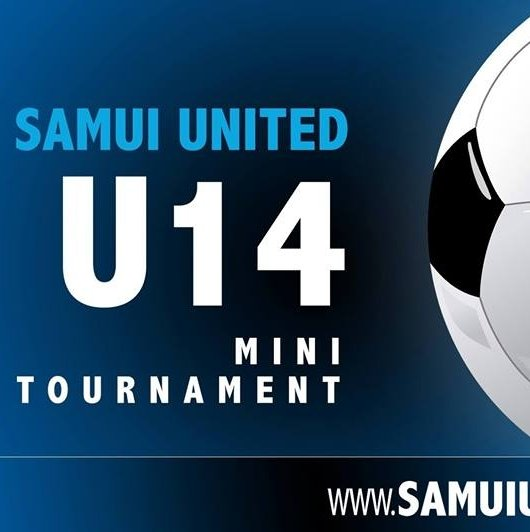 U14s Mini-Tournament