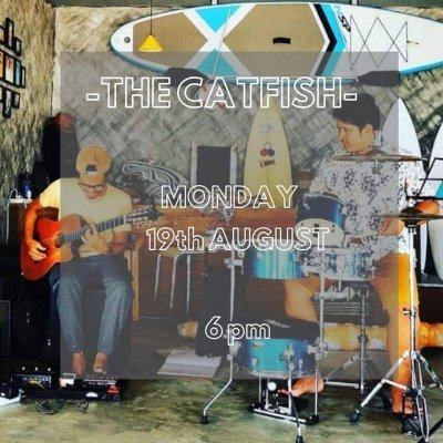 The Catfish - Timeless Hostel Live Music Sessions