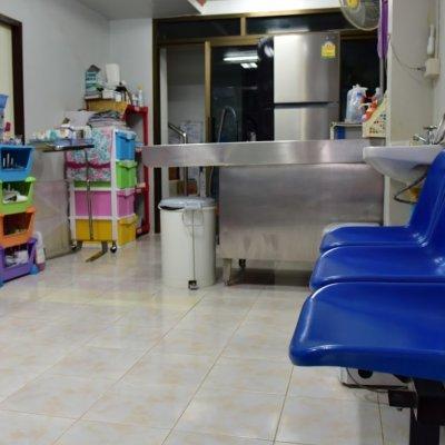 S.P. Animal Clinic