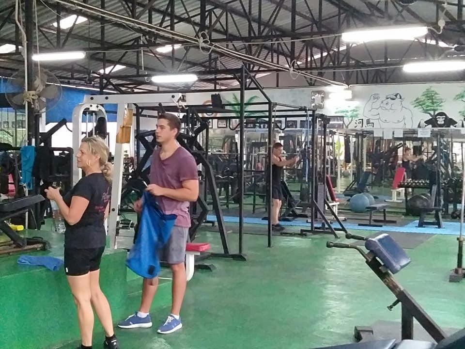 Hippo's Gym