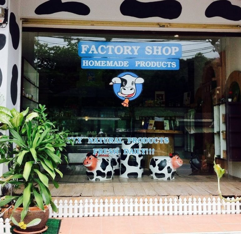 Lucky Cow Homemade Milk Products