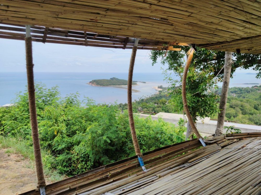 Cocoon Viewpoint