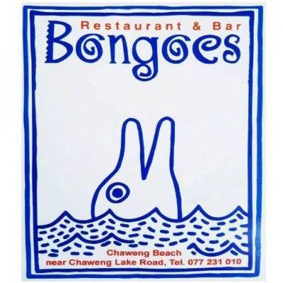 Bongoes