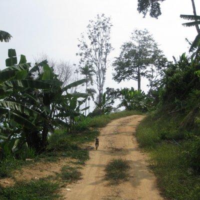 Hiking on Samui