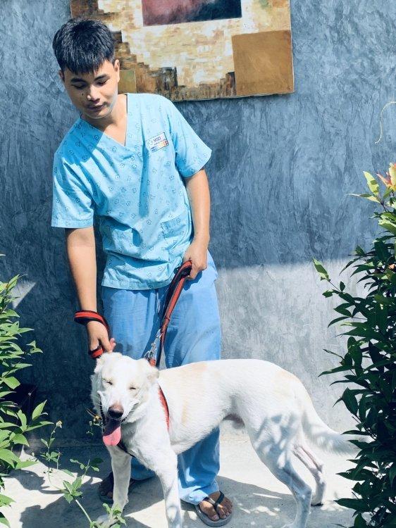 ANIMALIA PET HOSPITAL