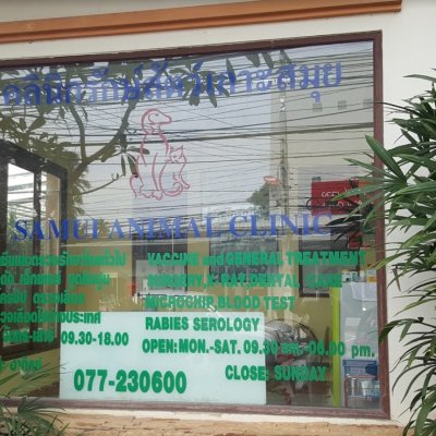 Samui Animal Clinic